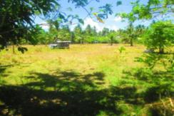 13,013 sqm Farmlot For Sale in Gloria, Oriental Mindoro