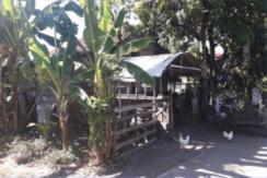 398 sqm Farmlot For Sale in Gloria, Oriental Mindoro